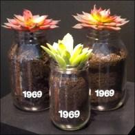 Flower Bottles 1969 Detail