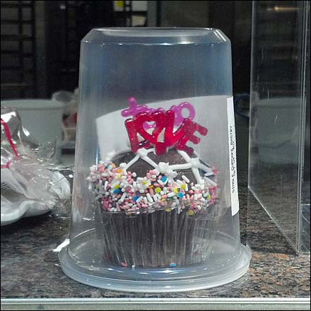 Cupcake in Bell Jar Closeup