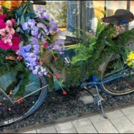 Spring Bicycles on Sale