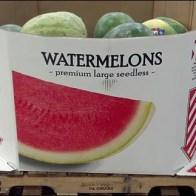 Watermelon QR Code Main