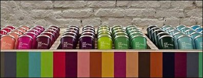Gourmet Tea by Color Detail