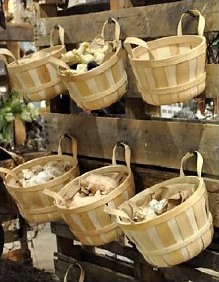 Basket Bulk and Pallet Closeup
