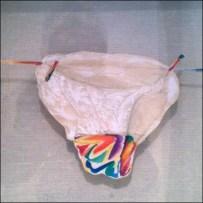 Shadow Boxed Panties Detail