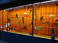 Hardware Store Window Dressing by Cole Hardware