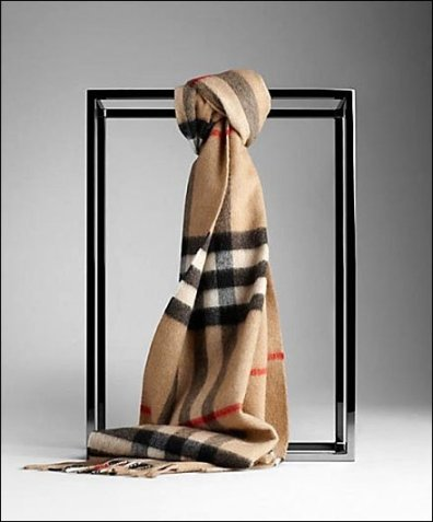Burberry Scarf and Space Frame