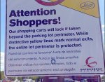Shopping Cart Anti THeft Details