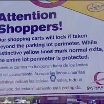 Shopping Cart Anti THeft Details