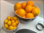 Citrus Lemon and Orange Food Prop Sell Aux
