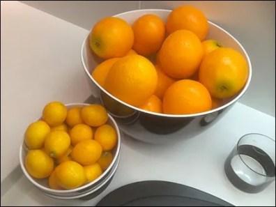 Citrus Lemon and Orange Food Prop Sell Aux
