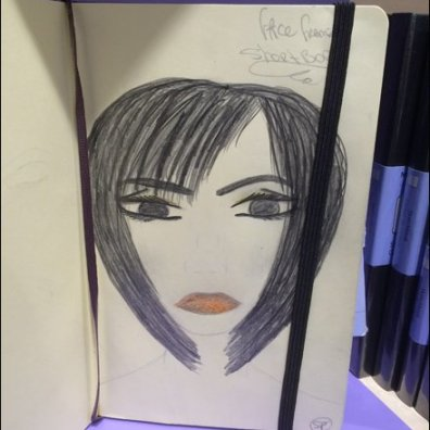 Moleskine Face Frame Sketchbook Aux