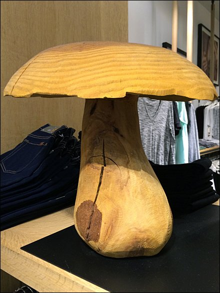 Mushrooms Sprout in Retail