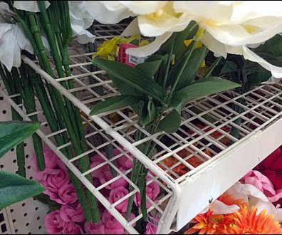 Floral Grid Shelves CloseUp Main