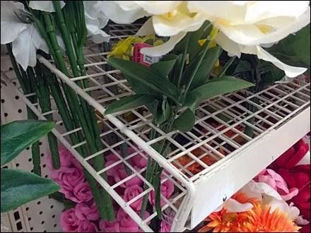 Floral Grid Shelves CloseUp Main