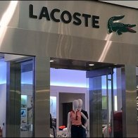 Lacoste Store Entry Branding In Stainless