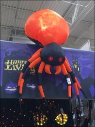 Halloween Spiders from Mars