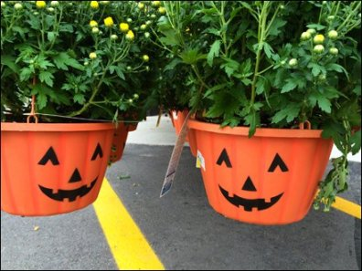 Pumpkin Pot Head Hang Rod 2