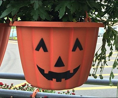 Pumpkin Pot Head Hang Rod 3