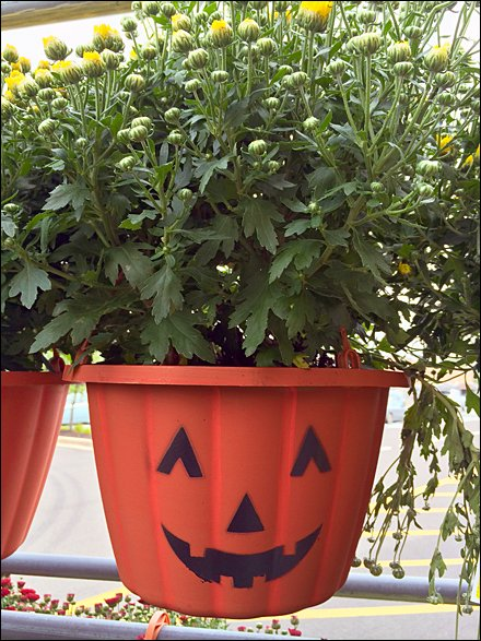 Pumpkin Pot Head Hang Rod Main