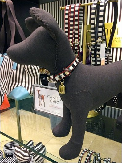 Henri Bendel Brands a Dog Collar Lg