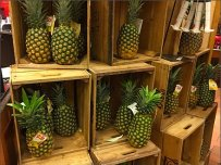 Dole Pineapple Pyramid 1