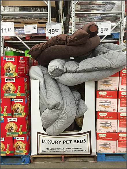 Luxury Pet Beds by the Pallet