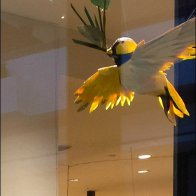 Little Birdie Window Dressing Detail
