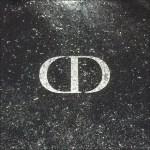 Christian Dior Logo as Visual Footnote