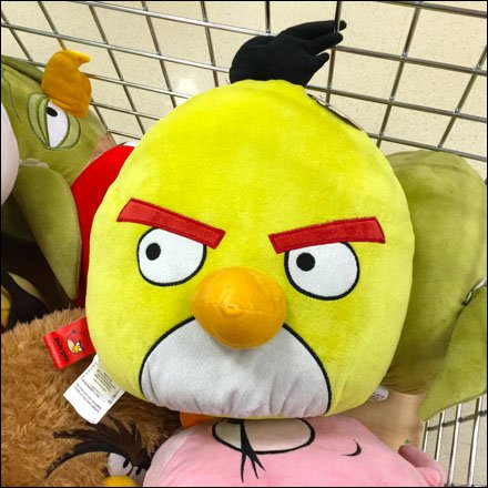 Angry Bird in a Bulk Bin Closeup Main