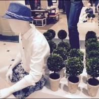 Men's Spring Short Topiary 3