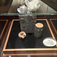 Museum Case Logs 3