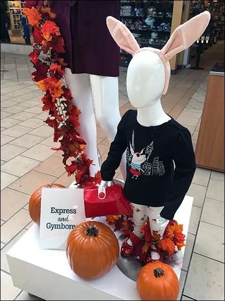 Express & Gymboree Mall Brand Partners 2