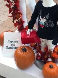 Express & Gymboree Mall Brand Partners 3