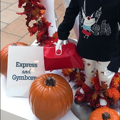 Express & Gymboree Mall Brand Partners 3