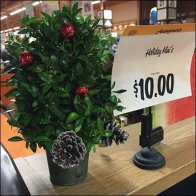 Christmas Mini Topiary Main
