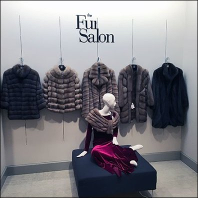 Fur Salon Departmental Branding 1