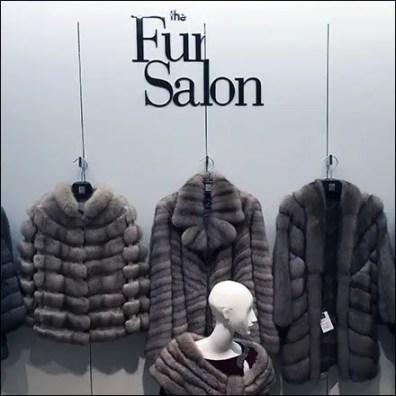 Fur Salon Departmental Branding 2
