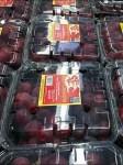 Coffin Case Riot of Raspberry Closeup