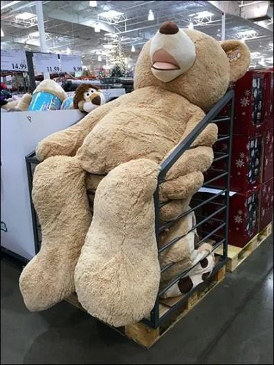 Jumbo Floppy Bear Bulk Bin 1