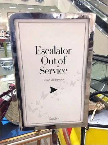 Follow Butterflies to Elevator