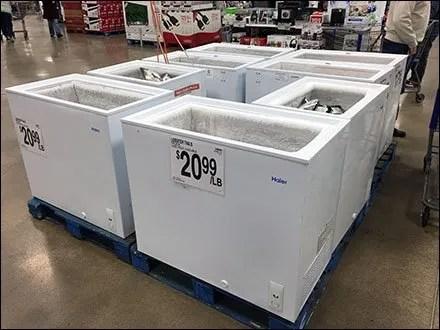 Pallate Coffin Case Lobster Sale Main