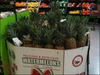 Pineapple Sold As Watermelon