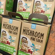 Organic Mushroom Farm For Sale Mobile Rack