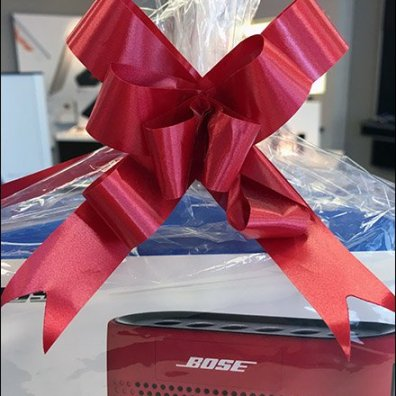 Bose Ribbon Matches Bose Speaker 3