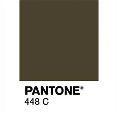 Pantone 448 C Square 2