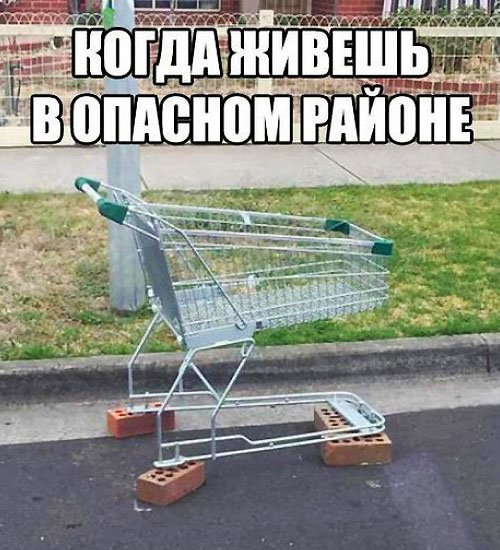 The Worst of Global Shopping Cart Vandalism