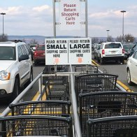 Wegmans Shopping Carts Segregated 2