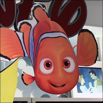 Disney Dory JCPenney Display Feature