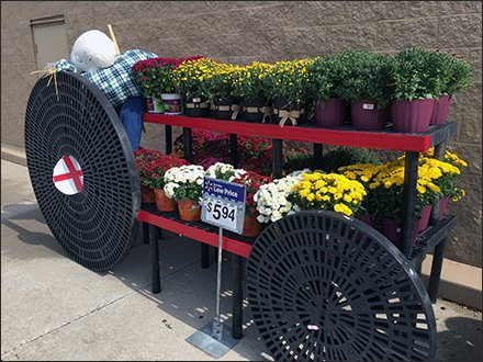 Fall Floral Do-It-Yourself Scarecrow Tractor Pull