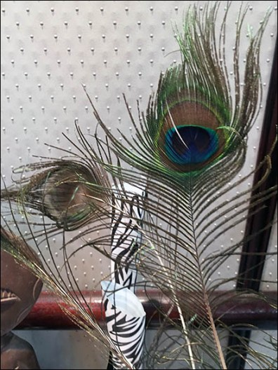 littmans-jewelers-diamond-party-peacock-feather-display-3
