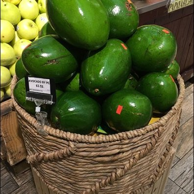avocado-rope-coil-produce-basketry-3